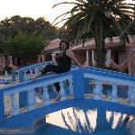 Photo of Blue Lagoon Holiday Apartments