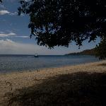 Moyo beach