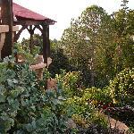 Kula Lodge Garden
