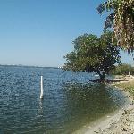 orillas de la laguna para ir a comer