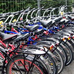 Fat Tire Bike Tours Foto