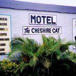 ‪Cheshire Cat Motel‬