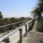 Dune walk to the beach