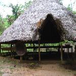 The Shaman Hut