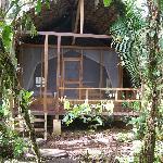 Photo de Huaorani Ecolodge