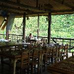 Beautiful Nuts Huts restaurant overlooking the Loboc River