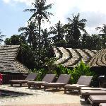 Quiet Pool Area