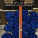 rare blue long stem roses