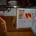 frigorífico con comida y hongos