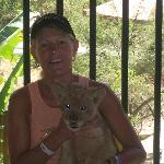 Bezerk holding lion cub