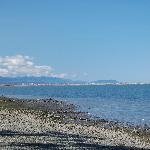 View of the beach and Dungeness Spit