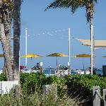 The Orchid grill on the beach