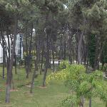 Foto de Las Chapas Palacio del Sol