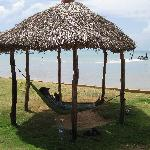Shelter with hammock