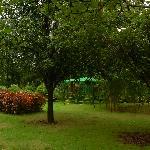 nature garden pavilion sit out