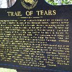 The trail of tears story