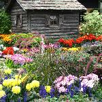 Cabin in the garden
