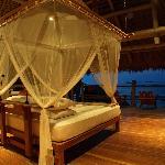 Sleeping in Paradise