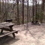 Campsite 2 has fire pits, barbecue grills, and picnic tables.
