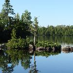 Islet on Poplar Lake