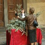 the outside, people collecting olive branches
