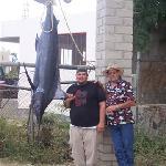 225 lb blue marlin