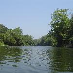 Paddling up the Macal River