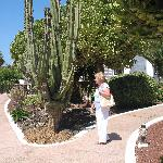 Las Casitas - Lovely gardens