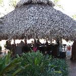 outdoor Tiki Bar