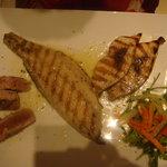 sea bass, tuna, swordfish grilled