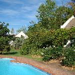 Rothman Manor - marqoos_pl