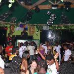 jungle dance floor
