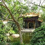 Plants, Ponds and Pavilions
