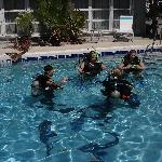 We do scuba lessons- pool less than it's cleanest