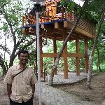 A view of the tree top house