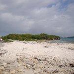 Toda una orilla de la isla esta llena de desperdicios y basura