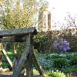The mediaeval walled garden with well