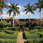 Hotel El Convento Gardens