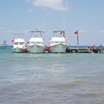 The 3 Dressel boats at the Iberostar