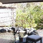 Garden area with naturally heated pool
