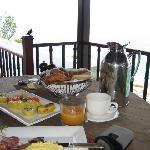 Breakfast and birds