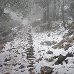 subida Puerto del Tejo- Sierra de Cazorla