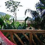 La terraza de la habitación