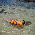 #1 snorkling for adults and kids with so many fishes and corals in gentle water
