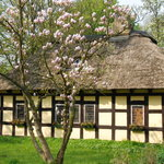 Thatched building in the garden