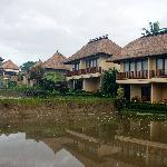 view of the rooms/villas from the rice field
