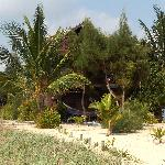 View of Colibri House from the beach