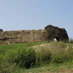Siria citadel