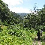 hiking Volcan Baru