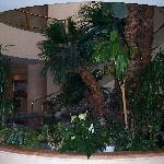 Waterfall Grotto in Lobby